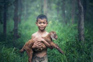 10 Beispiele für hervorragendes Storytelling
